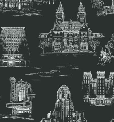 QCT9 swatch 2798 scaled 375x400 - Queen City Toile - Fordham